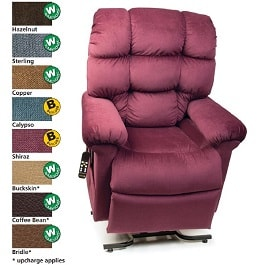 19 Inches Zero Gravity Cloud Reclining Lift Chair 375Lb Cap in Houston TX by Golden Technologies